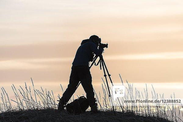 Silhouette von einem Fotografen mit Stativ  Sonnenuntergang  bei Stokksnes  Island  Europa