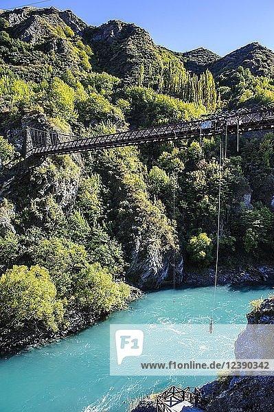 AJ Hackett Bungy Jumping auf der Kawarau Brücke über den Kawarau Fluss bei Queenstown  Südinsel  Neuseeland  Ozeanien