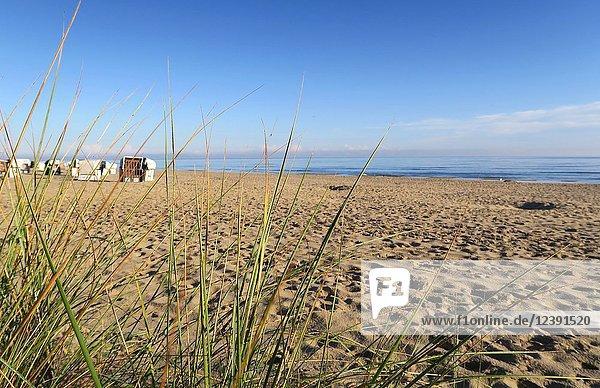 Deutschland  Usedom  Heringsdorf  Mecklenburg-Vorpommern  Strandkörbe