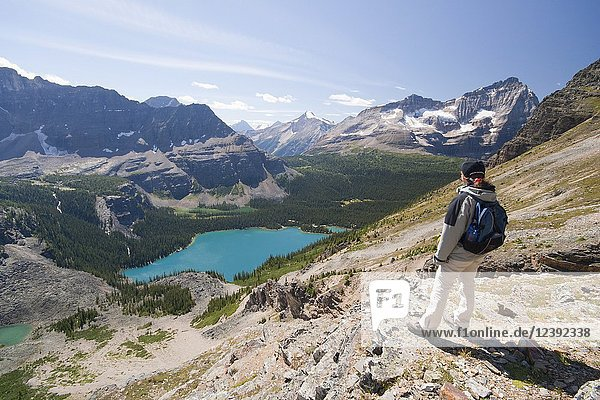Woman looking from high lookout at mountain scenery with lake O'Hara in the valley  Yoho National Park  British Columbia  Canada..