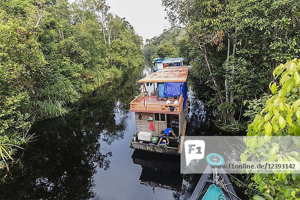 Klotok with tourists on the Sekonyer River  Tanjung Puting National Park  Borneo  Indonesia.