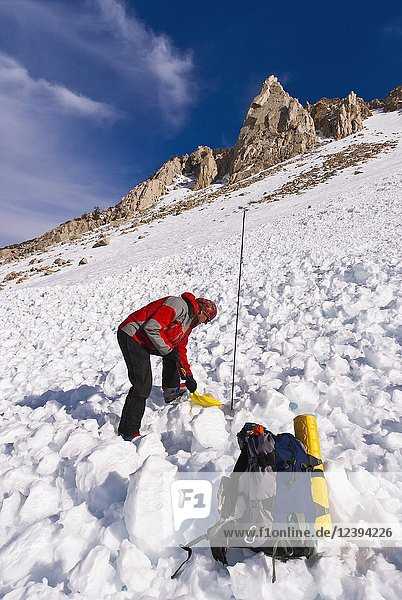 Backcountry skier using avalanche gear  Inyo National Forest  Sierra Nevada Mountains  California USA.