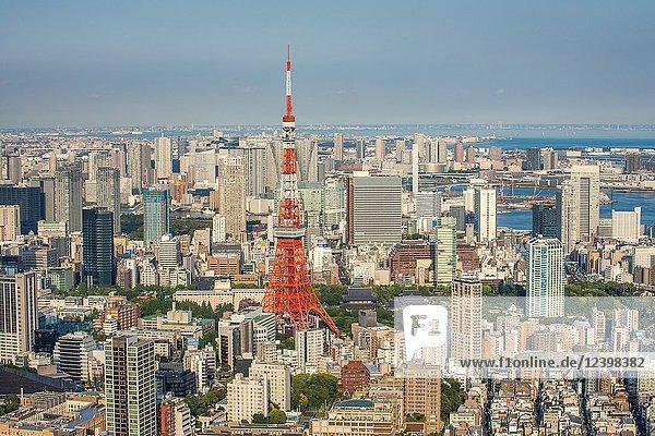 Japan  Tokyo City  Minato Ku panorama  Tokyo Tower.