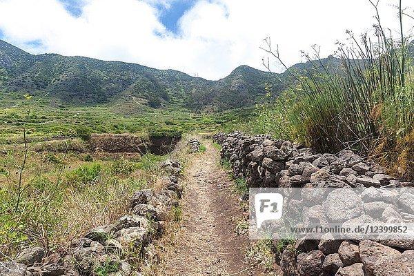 Path to Teno Alto in El Palmar municipality (Tenerife island)