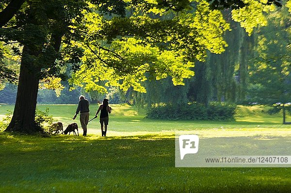 Two seniors and their dogs in a park early in the morning  Ontario  Canada. It?s also a type of shinrin-yoku  a term that means 'taking in the forest atmosphere' or 'forest bathing.' It was developed in Japan during the 1980s and is now an important part of preventive health care and healing in Japanese medicine. Also a subject of serious research  mainly in Japan and Korea  on the health benefits of spending time under the canopy of a living forest.