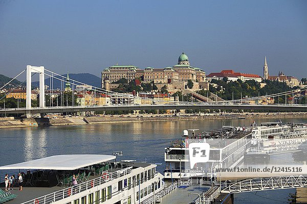 Hungary  Budapest  Castle District  skyline  Elisabeth Bridge  Danube River  cruise ships .