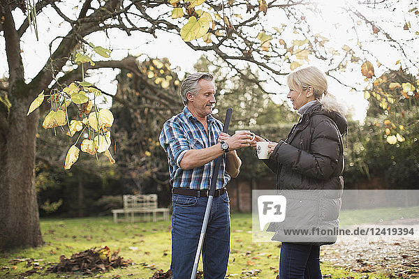Mature couple drinking coffee and raking autumn leaves in sunny backyard