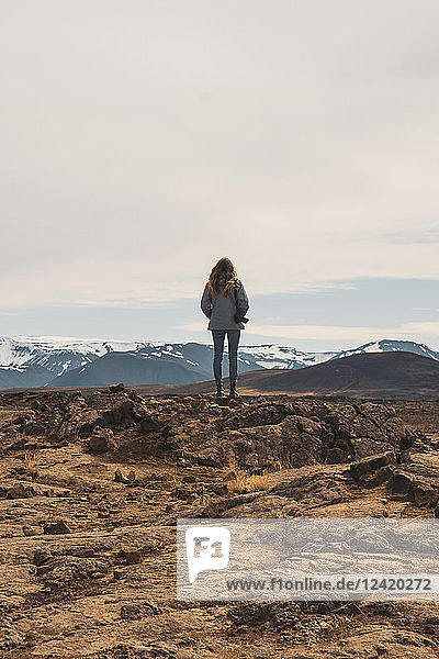 Iceland  female photographer standing on rocks  rear view