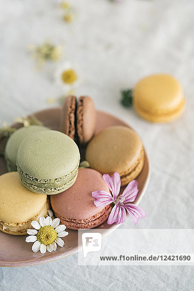 Macarons with blossoms in bowl