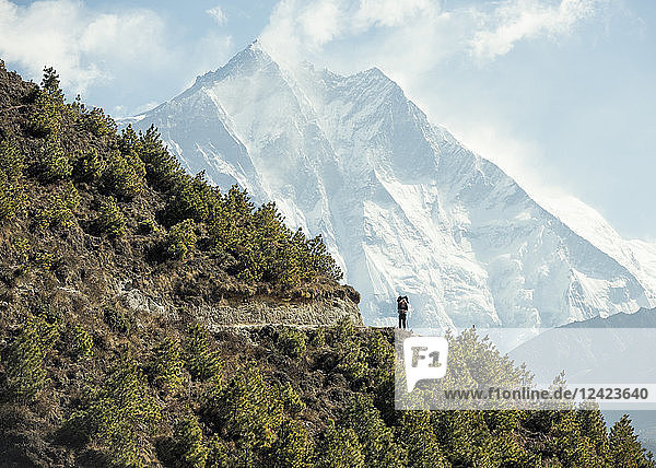 Nepal  Solo Khumbu  Everest  Sagamartha National Park  Man looking at Mount Everest