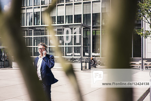 Mature businessman on cell phone outdoors