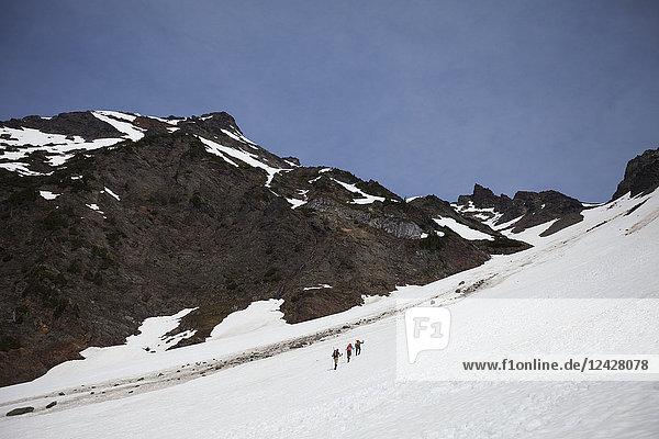 Distant view shot of mountain climbers climbing Foley Peak  North Cascade Mountain Range  Chilliwack  British Columbia  Canada