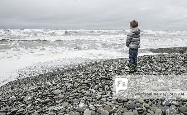 Side view shot of single boy looking at sea on rocky beach  Olympic National Park  Washington State  USA
