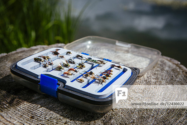 Fly fisherman flies in tackle box