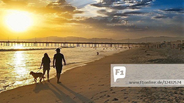 Couple Strolling along Beach with Dog at Sunset