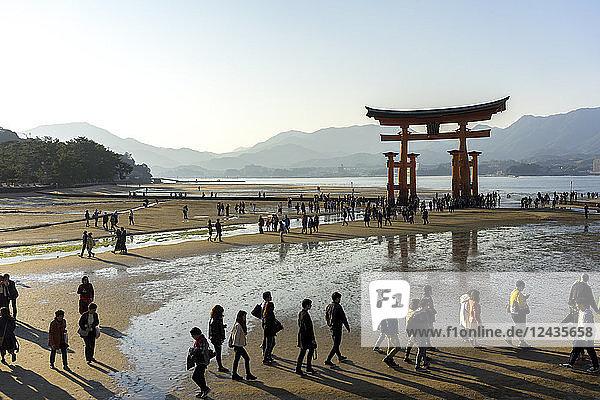 The red wooden torii gate at low tide on Miyajima island  Itsukushima  UNESCO World Heritage Site  Hiroshima Prefecture  Honshu  Japan  Asia