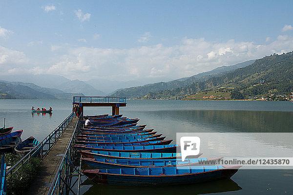 Boats on Phewa Lake  Pokhara  Nepal  Asia