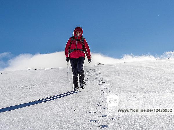 Female winter walker descending a fresh snowy slope in the Cairngorm National Park  Scotland  United Kingdom  Europe