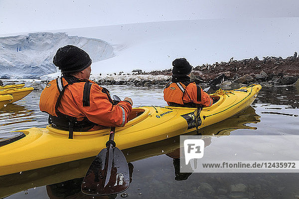 Couple kayaking in the snow  watching a Gentoo penguin colony  Chilean Gonzalez Videla Station  Waterboat Point  Antarctica  Polar Regions