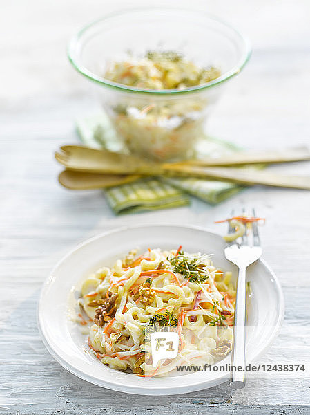 Noodle salad with carrot  walnut and cress on plate