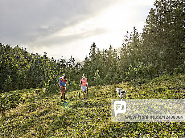 Austria  Tyrol  Mieming  couple with dog hiking in alpine scenery