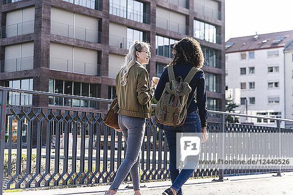 Friends walking on bridge  talking  having fun  rear view