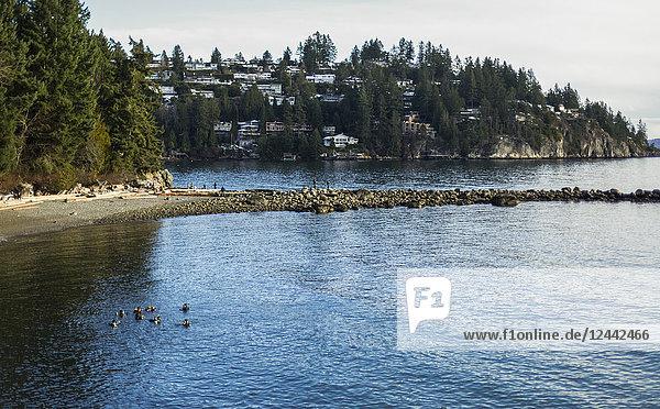 Whytecliff Park  Horseshoe Bay; British Columbia  Canada