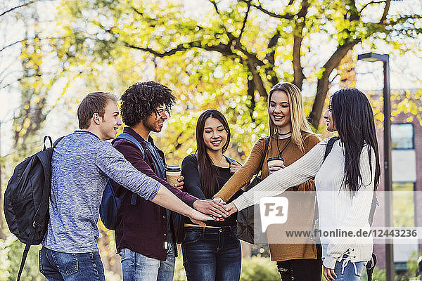 Five ethnically diverse student friends standing in a university campus with their hands on top each other's in agreememt that they are going to have a successful school year  Edmonton  Alberta  Canada