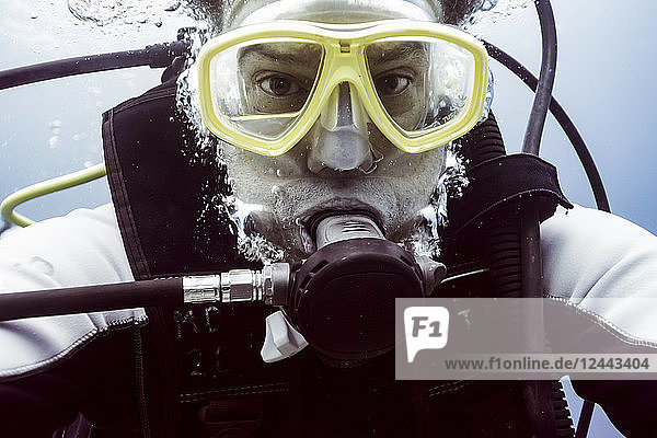 Scuba diver underwater looking at the camera  Belize