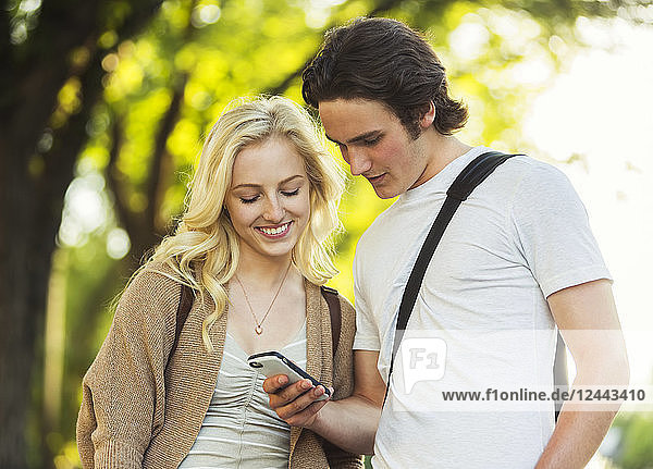 A young couple standing together and checking social media on a smart phone while walking through a university campus  Edmonton  Alberta  Canada