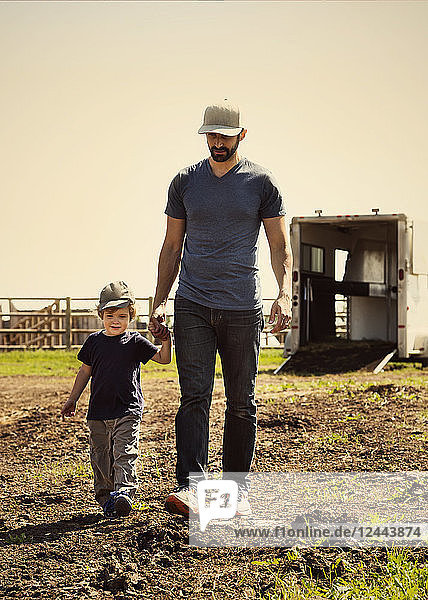 A father walks and holds hands with his young son on a farm  Edmonton  Alberta  Canada
