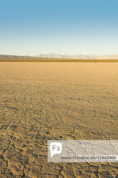 Vertical image of a dry mud-caked lake bed with snow-capped mountains in the distance at dawn; Barreal  San Juan  Argentina