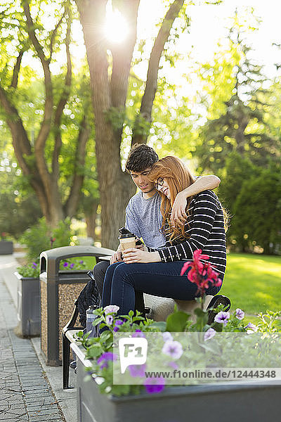 A young couple sitting together on a bench in a park and checking social media on a smart phone  Edmonton  Alberta  Canada