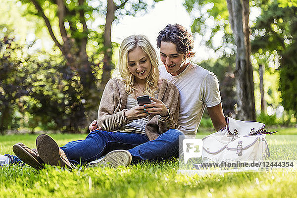 A young couple sits studying on the grass on the university campus with a textbook and tablet while using a smart phone  Edmonton  Alberta  Canada