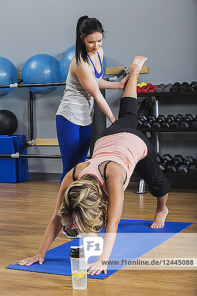 A middle-aged women doing a downward dog leg lift yoga exercise at the gym with her personal trainer giving assistance  Spruce Grove  Alberta  Canada