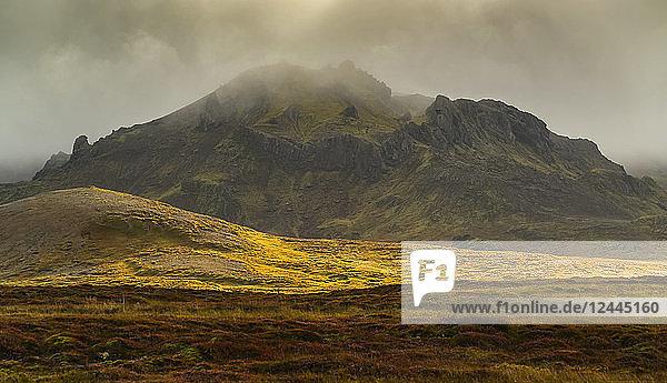 Autumn colours on the tundra vegetation of Iceland's Snaefellsness Peninsula  Iceland