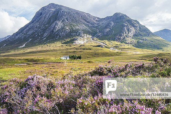 Solitary small home in Scottish Highlands near Glencoe  Scotland  UK.