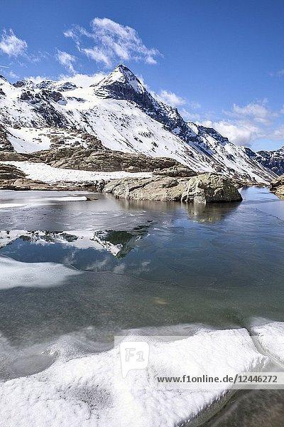 Pizzo Scalino reflected in lake Campagneda Valmalenco  Valtellina Lombardy Italy Europe.