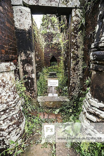 My Son Sanctuary  archaeological site  UNESCO World Heritage Site  Quang Nam Province  Da Nang  Vietnam  Southeast Asia.