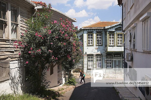 Traditional wooden house covered with flowers in Heybeliada-Halki  Prince Islands  Marmara Sea  Istanbul  Turkey  Europe.