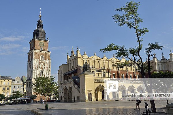 Town Hall Tower and Cloth Hall (Sukiennice) on Rynek Glowny  the main square of the Old Town of Krakow  Malopolska Province (Lesser Poland)  Poland  Central Europe.
