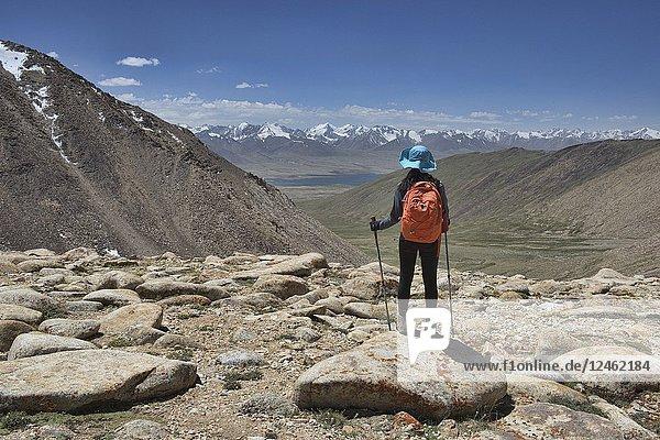 Looking into the Great Pamir Range of Afghanistan from the Belayrik Pass  Lake Zorkul  Tajikistan.