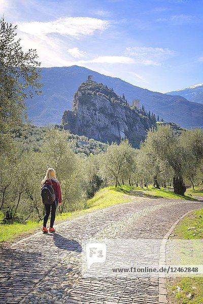 A young tourist walks on the Via Crucis. Arco di Trento  Trento province  Trentino Alto Adige  Italy  Europe.