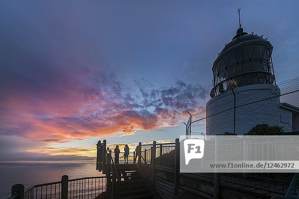 Sunset at Nugget Point lighthouse. Ahuriri Flat  Clutha district  Otago region  South Island  New Zealand.