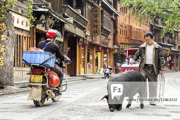 Man with pork  Xijiang Thousand Houses Miao Village  Guizhou  China.