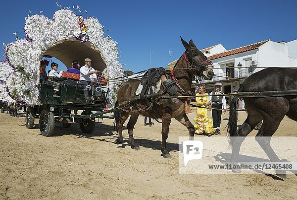 Decorated carriage during the annual Pentecost pilgrimage of El Rocio. Huelva province  Andalusia  Spain.