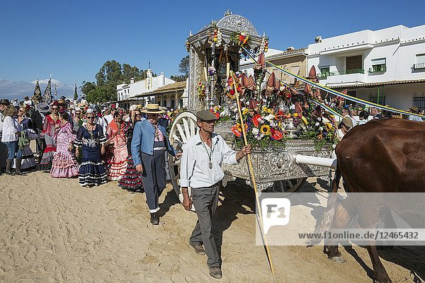 During a famous Pentecost pilgrimage the village of El Rocio converts into a colourful spectacle with lavishly decorated ox-carts  dressed up men and women wearing beautifully coloured gypsy dresses. Huelva province  Andalusia  Spain.