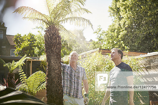 Gay couple watering palm tree