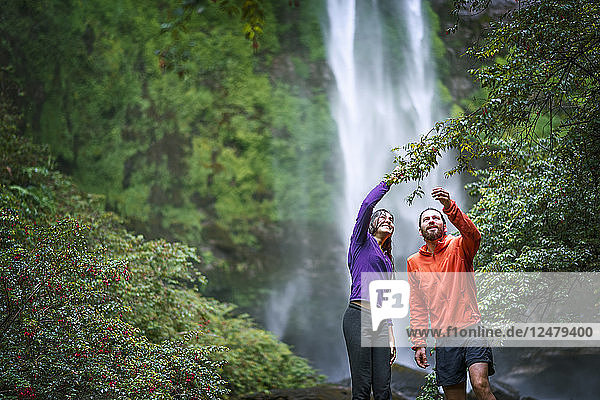 Couple holding branch by waterfall