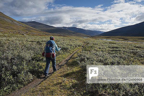Hiker on trail through Tj?§ktjavagge south of Singi hut  Kungsleden trail  Lapland  Sweden